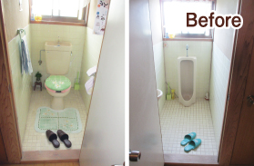 reform_toilet_before